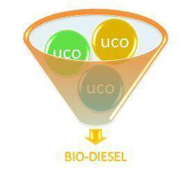 ucp-to-biodiesel